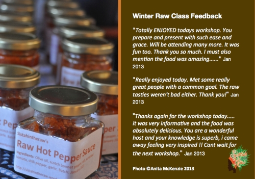 Winter raw class feedback Jan2013